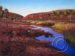 Early Morning Finke River