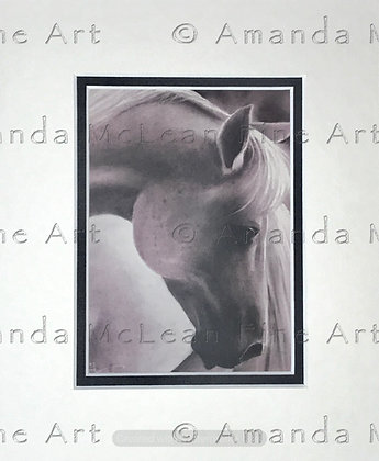 Pink Horse. Small Matted Print