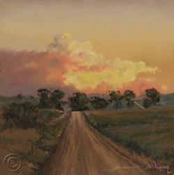 Sunset Bushes Lane