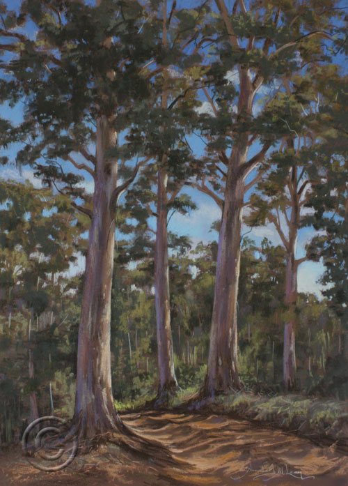 Pabral Road, Mount Coree ACT
