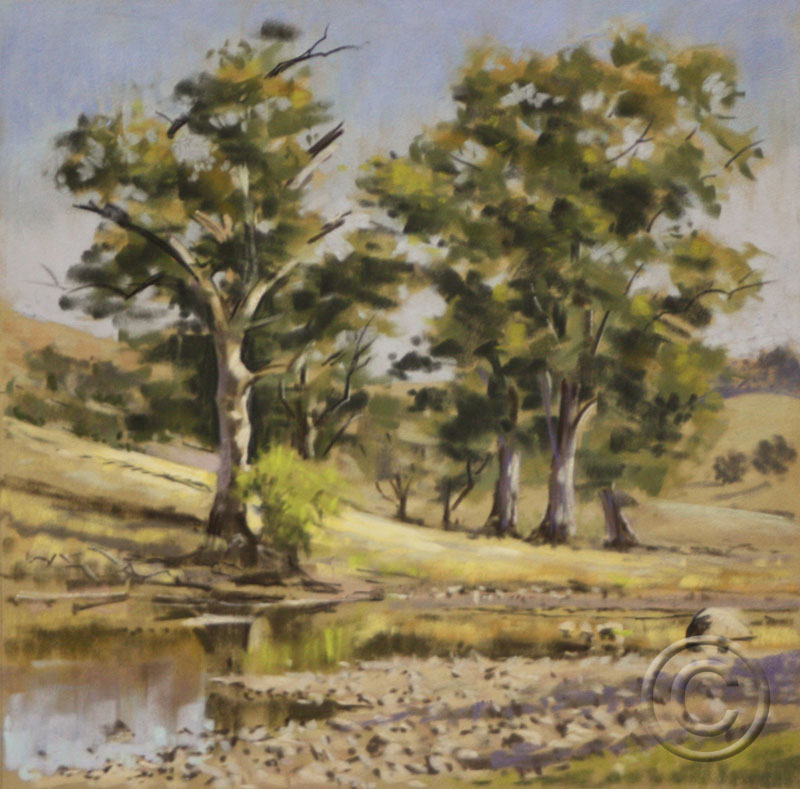 The Murrumbidgee Near Yass