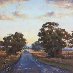 After the rain-Yass Valley