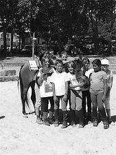La Ronde des Poneys Poneys Cheval équitation