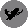 Grey SLED ICON.png