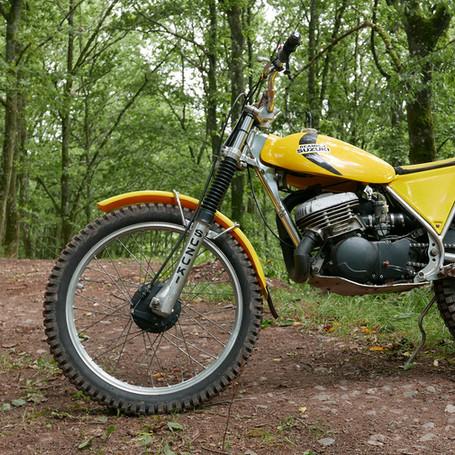Suzuki Beamish RL325 1979 325 ccm