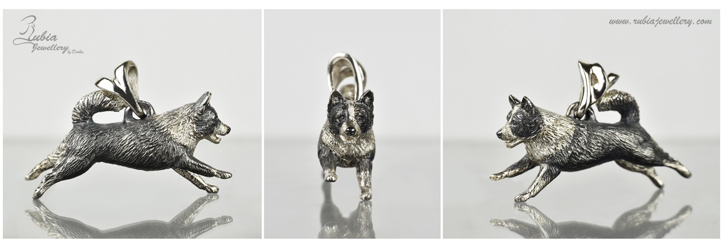 """Elín"" Icelandic sheepdog"