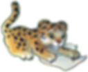 leopard_write.png