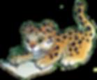 leopard_write_flip.png