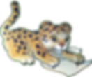 leopard_write1.png