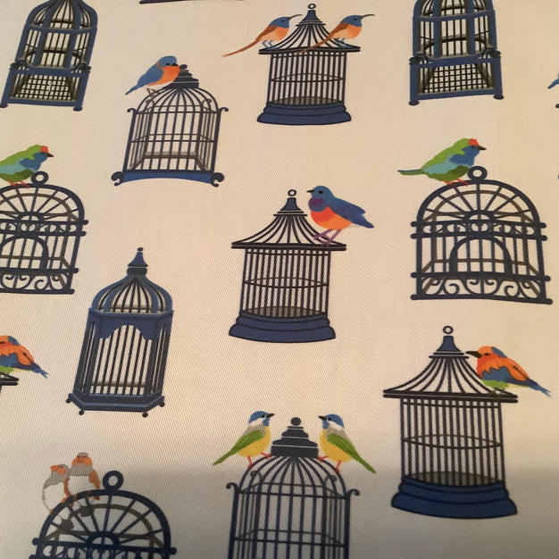 Blue Birdcages