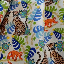 Cheetahs and Monkeys