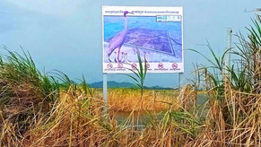 Takeo's Prek Lapouv nature reserve at risk from drought