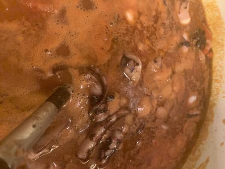 Squid Stew!