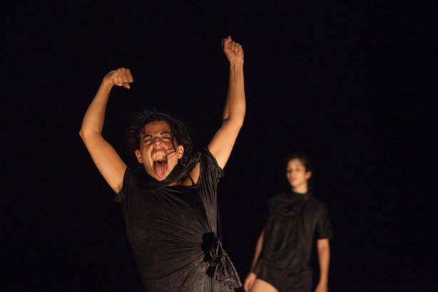 """ANEMONE"" Sally Anne Friedland Dance Drama"