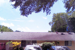 Shingle Roof Replacement-Before