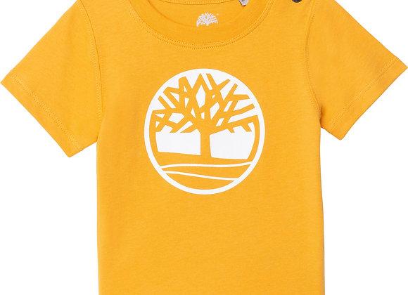 t-shirt à manches courtes Timberland