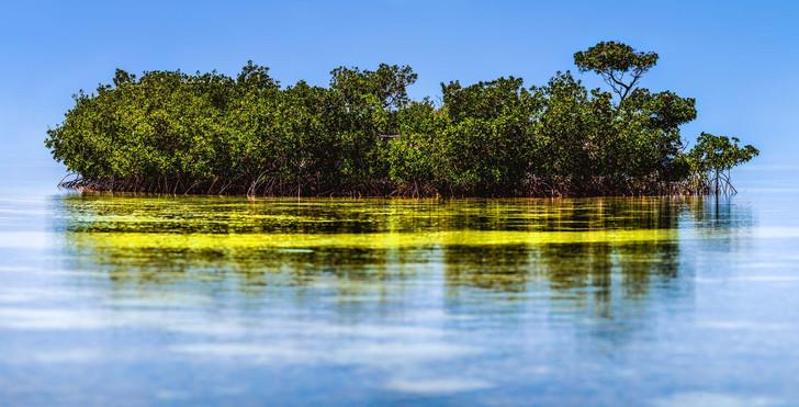 Key West Florida Floating Island