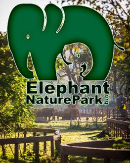 Elephants of Thailand Elephant Nature Park