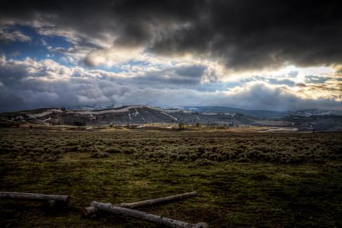 Yellowstone National Park Tundra