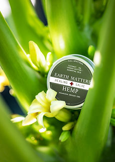 Hemp-Salve-Hawaii-Flower-web.jpg