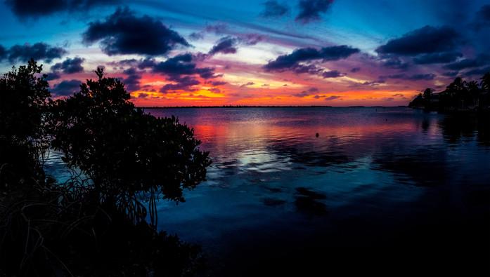 Key West Florida Mangrove Sunset