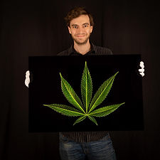 Pot Leaf Cannabis Photo for Sale