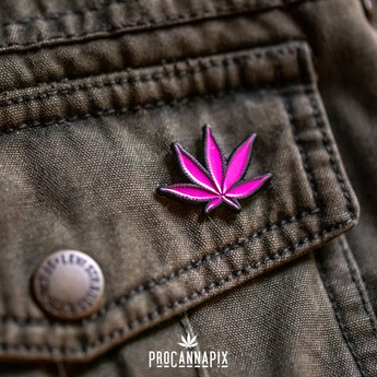 Pink Pot Leaf