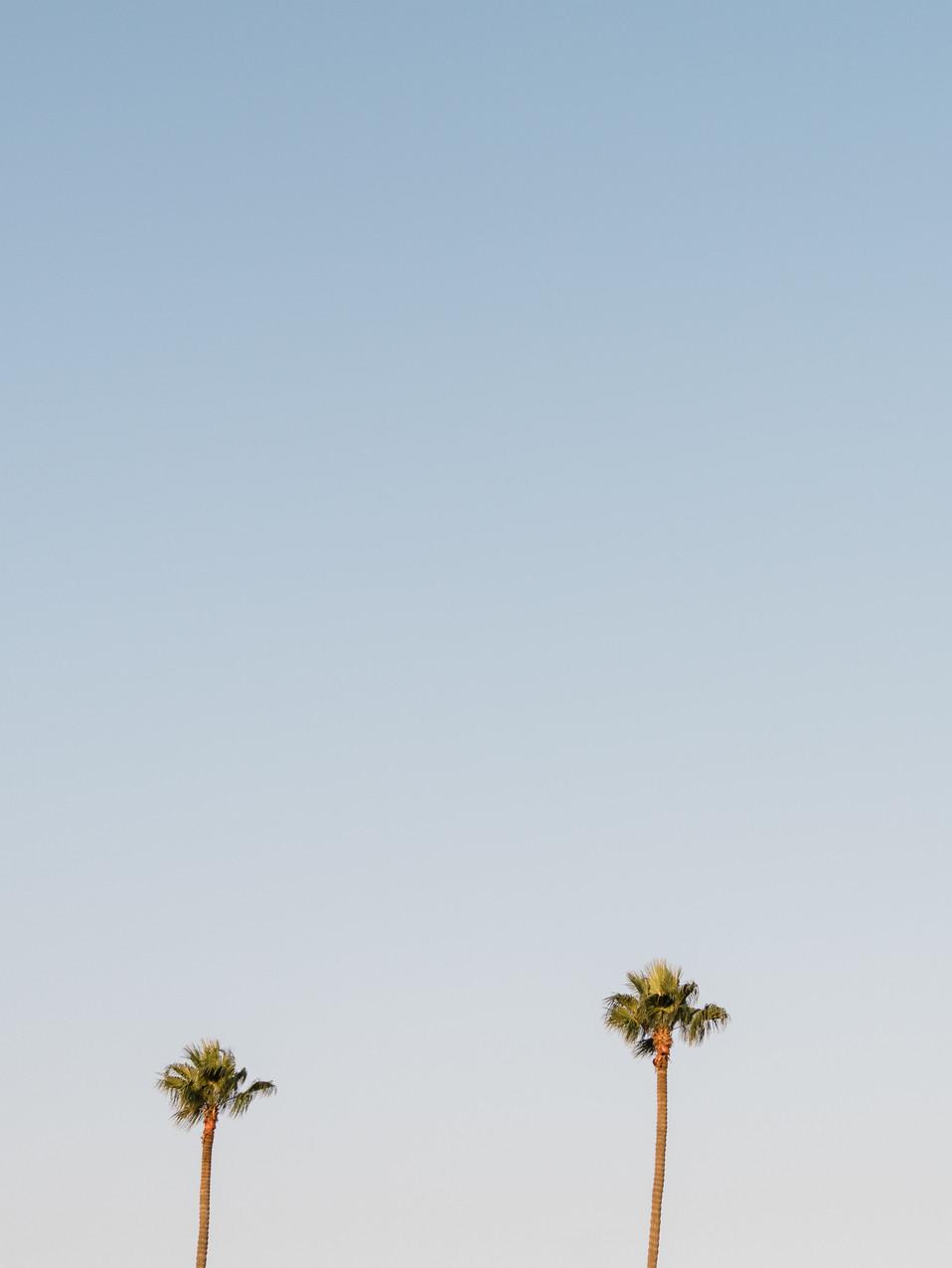 sandansea-beach-40.jpg