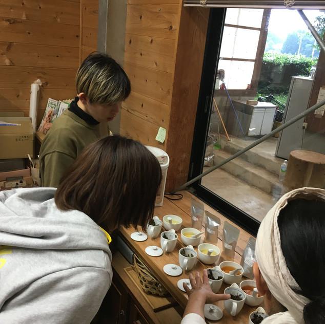 宮崎茶房:原茶のテイスティング