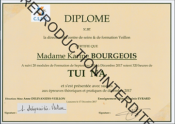 Diplome Tuina_Karine Bourgois