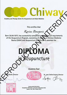 Diplome Acupuncture_Karine Bourgois