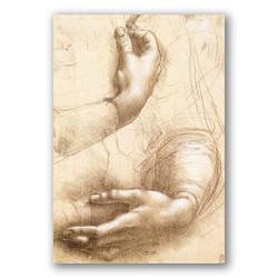 Estudio de manos y brazos-Copia obras arte leonardo da vinci