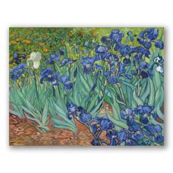 Irises-Copia obras arte famosas vincent van gogh