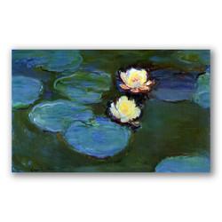 Water Lilies-Copia obras arte claude monet