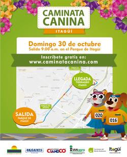 Caminta Canina y de Mascotas Tierragro Itagui 3