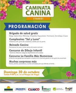 Caminta Canina y de Mascotas Tierragro Itagui 4