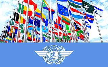 FLAG OACI.jpg