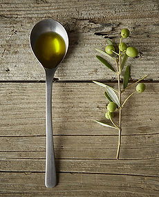 Olive Branch and Olive Oil