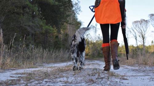fcf0b6bdad439 Country & Western · Dans Briar Chaps Ladies: Hunting Clothing