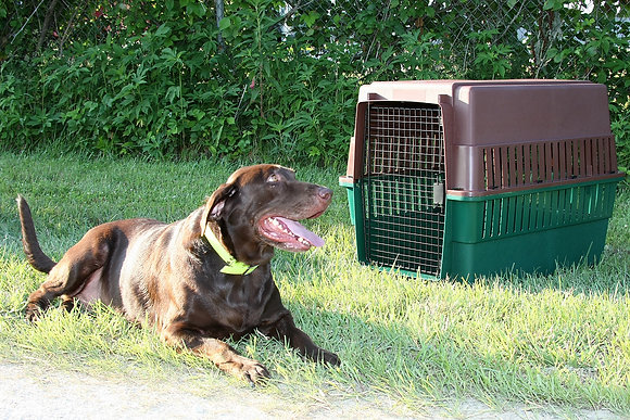 Sportsman's Choice Portable Kennel