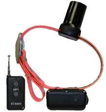DT Systems BTB 809 Beeper With Remote