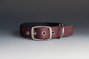 Swagger Nylon Collar