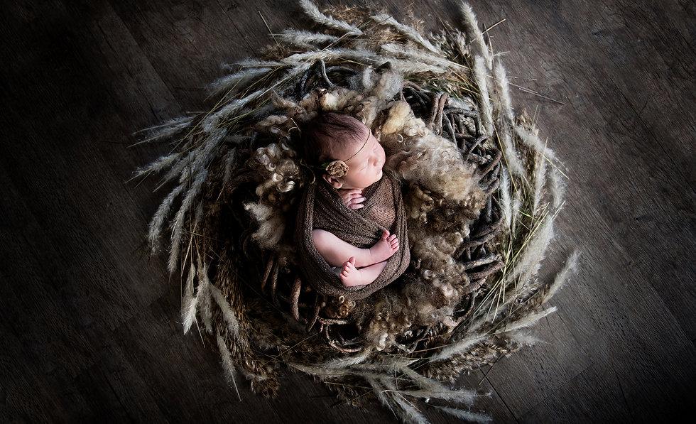 Beautiful Newborns