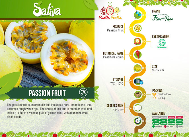 Passion_Fruit_(Maracuyá).jpg