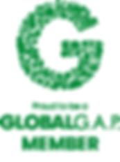 global gap member logo.png