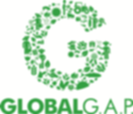 Global Gap Logo.png