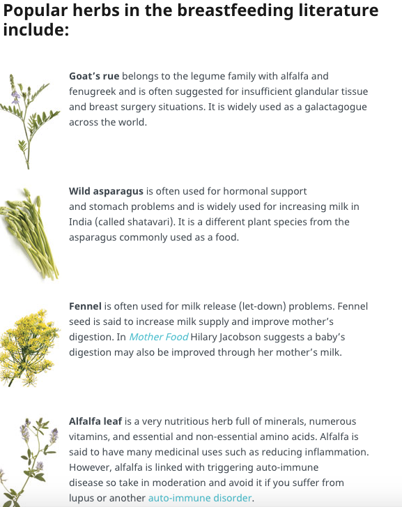 Herbal Galactagogues