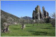 Monumento_Naturale_di_Campo_Soriano_-_Ra