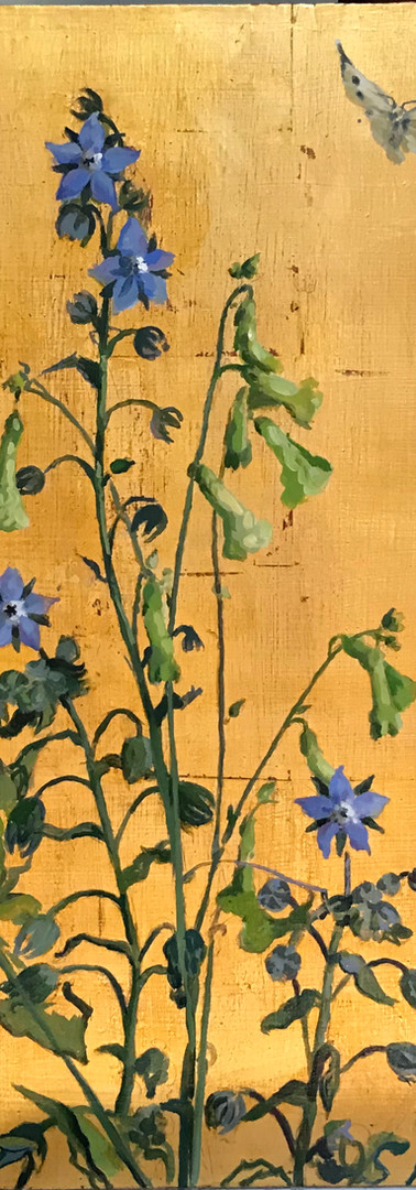 Borage and Butterfly