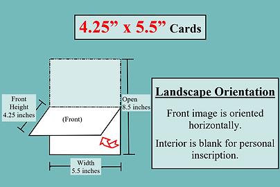 card dimension illustrations 4.25x5 Land